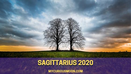 Shocked , Your 2020 Sagittarius